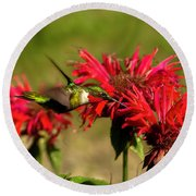 Hummer In The Bee Balm Round Beach Towel