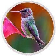 Hummingbird - 28 Round Beach Towel