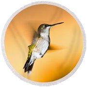 Hummingbird Agains The Sunset Round Beach Towel