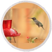 Hummingbird And Feeder Round Beach Towel