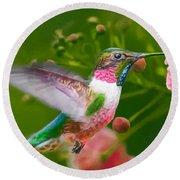 Hummingbird And Flower Painting Round Beach Towel