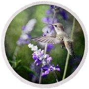 Hummingbird And Purple Lupine  Round Beach Towel