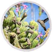 Hummingbird And The Saguaro  Round Beach Towel