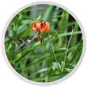 Hummingbird And Tiger Lilly Round Beach Towel