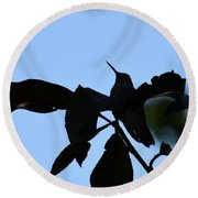 Hummingbird At Sunrise Silhouette Round Beach Towel