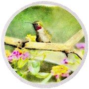 Hummingbird Attitude - Digital Paint 1 Round Beach Towel