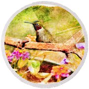 Hummingbird Attitude - Digital Paint 4 Round Beach Towel