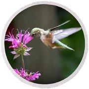 Hummingbird Beauty Round Beach Towel