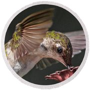 Hummingbird. Round Beach Towel