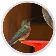 Hummingbird De Round Beach Towel