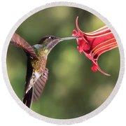 Hummingbird Enjoying Beautiful Flower Round Beach Towel
