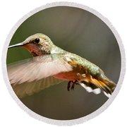 Hummingbird Facing Left Round Beach Towel