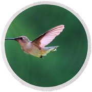 Hummingbird Flickering Its Tongue Round Beach Towel