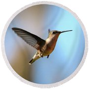 Hummingbird Friend Round Beach Towel