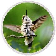 Hummingbird Happy Dance Round Beach Towel
