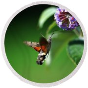 Hummingbird Hawk Moth - Five Round Beach Towel