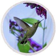 Hummingbird In Butterfly Bush Round Beach Towel