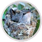 Hummingbird In Nest 2 Round Beach Towel