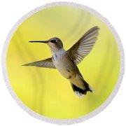 Hummingbird In Yellow Round Beach Towel