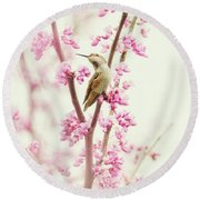 Hummingbird Perched Among Pink Blossoms Round Beach Towel