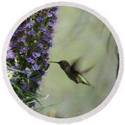 Hummingbird Sharing Round Beach Towel