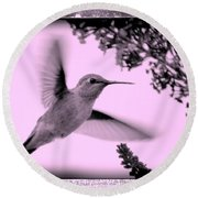 Hummingbird With Old-fashioned Frame 2  Round Beach Towel