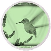 Hummingbird With Old-fashioned Frame 5 Round Beach Towel