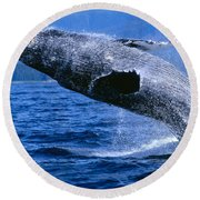 Humpback Full Breach Round Beach Towel