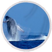Humpback Whale Breaching Round Beach Towel