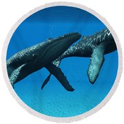 Humpback Whales Surfacing Round Beach Towel