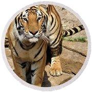 Hunger Tiger Round Beach Towel