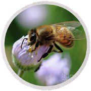 Hungry Bee Round Beach Towel