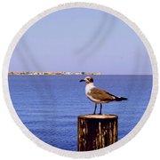 Hungry Sea Gull Round Beach Towel