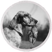 Hunting Dog With Quail, C.1920s Round Beach Towel