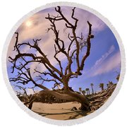 Hunting Island Beach And Driftwood Beaufort Sc Round Beach Towel