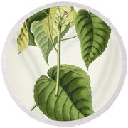 Hura Botanical Print Round Beach Towel