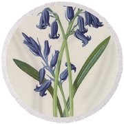 Hyacinth Round Beach Towel