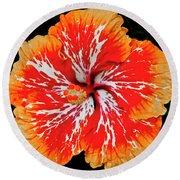 Hybrid Hibiscus II Maui Hawaii Round Beach Towel