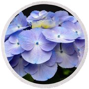 Hydrangeas In Purple Round Beach Towel