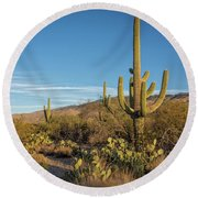 I Am The Tallest Saguaro Round Beach Towel