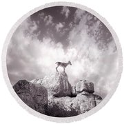 Ibex -the Wild Mountain Goats In The El Torcal Mountains Spain Round Beach Towel