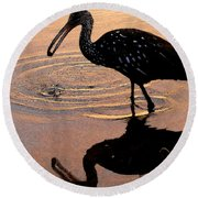 Ibis At Dusk Round Beach Towel