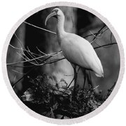 Ibis In Black And White  Round Beach Towel
