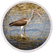 Ibis In The Rough Round Beach Towel