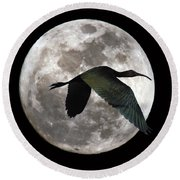 Ibis Moon Round Beach Towel