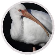 Ibis Pose Round Beach Towel