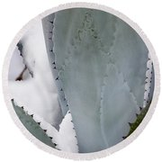 Ice Blue Agave Round Beach Towel