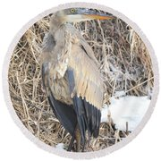 Ice Cold Heron Round Beach Towel