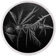 Ice Crystals ... Round Beach Towel