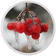 Ice Wrapped Berries Round Beach Towel